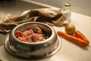 dieta vegana para cachorro: prato de cachorro com alimentos naturais crús