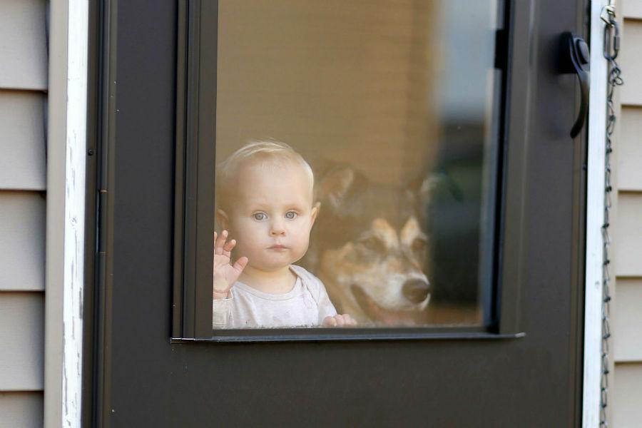 Cachorro percebe tempo: Bebê e seu cachorro a espera da chegada do dono na janela