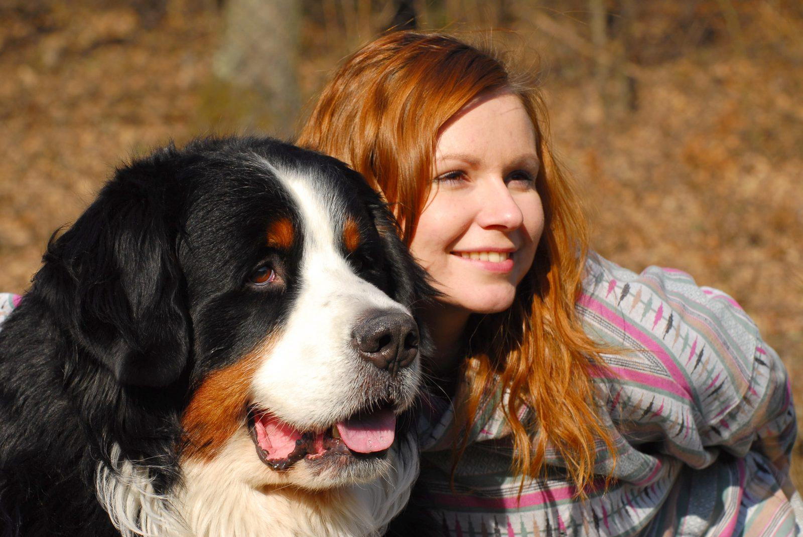 8 raças de cachorros de pêlos longos favoritas