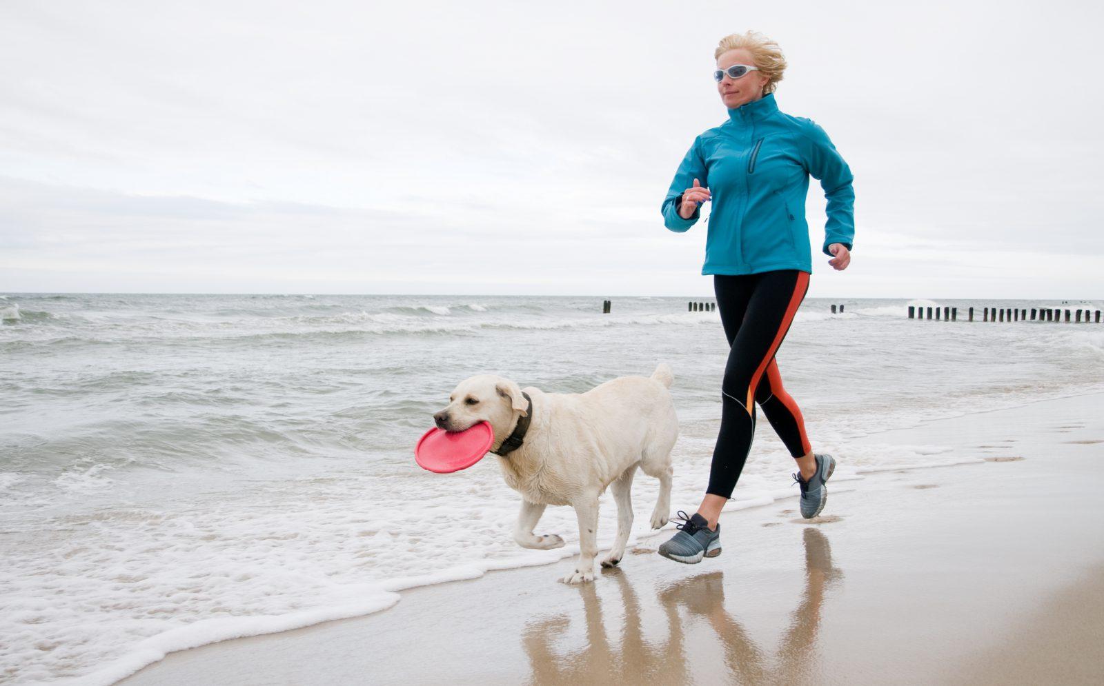 Brinquedo para cachorro idoso: Cachorro correndo na praia com seu dono, uma boa brincadeira de frisbee é tão bom quanto se ele estiver disposto e apto para isso.