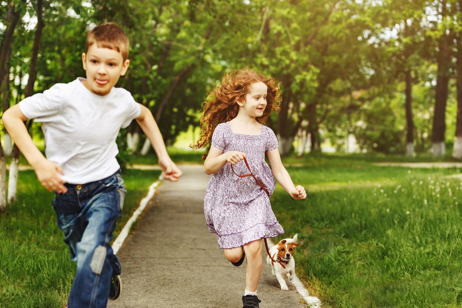 13 Dicas simples para manter o seu cachorro sempre jovem