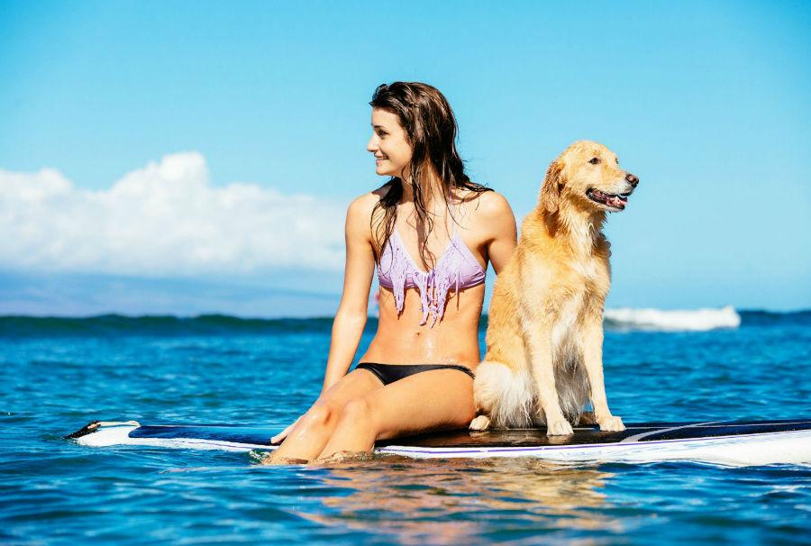 diversao-cachorro-exercicios-surf