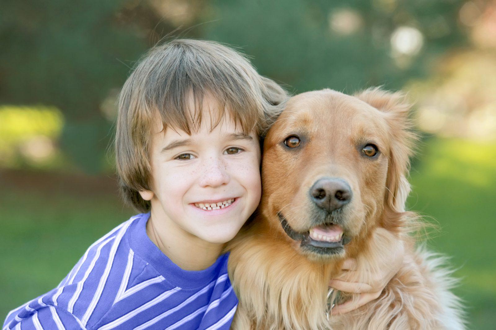 6 Boas razões para adotar um cão mais velho