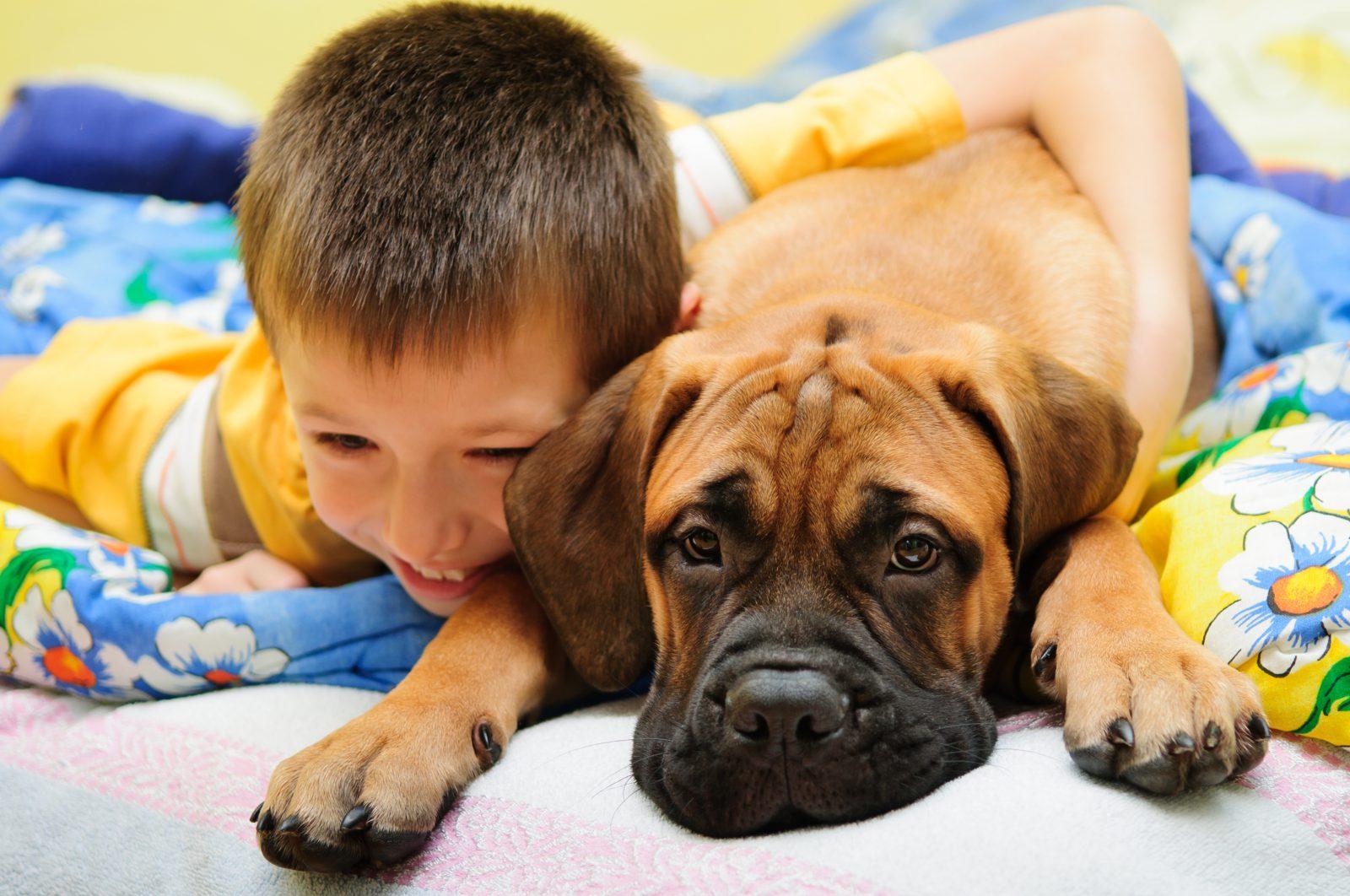 razoes-cachorro-dormir-cama-junto2