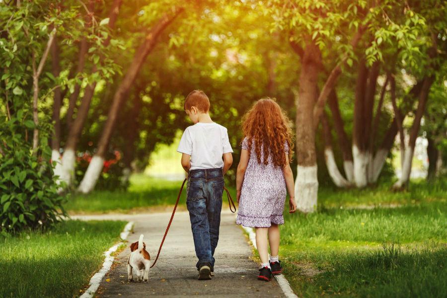 sonhar-cachorro-passeando